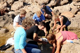 cleaning fish 'on the rocks' in Sarchittu for Sardinian fish soup cooking lesson