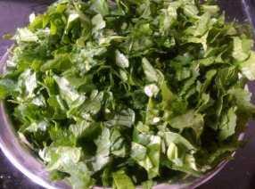SZCN6439-1-300x223 Mustard Leaf Gravy with Indian Corn Flat Bread/Makki Ki Roti and Sarson ka Saag