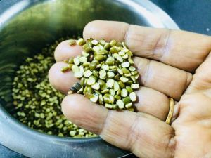 IGKK4921-300x225 Split Green Gram Lentil Curry/ Green Gram Dal Fry