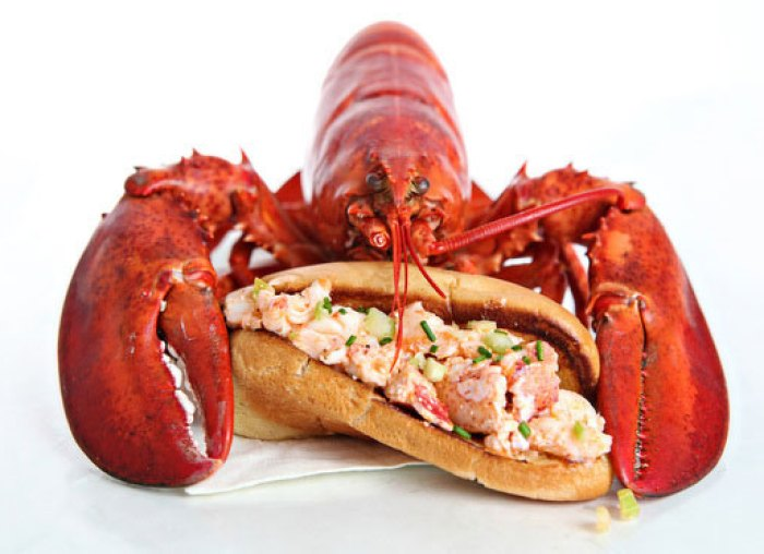 "Ken's ""Purist"" Maine Lobster Roll – Tasty Island"