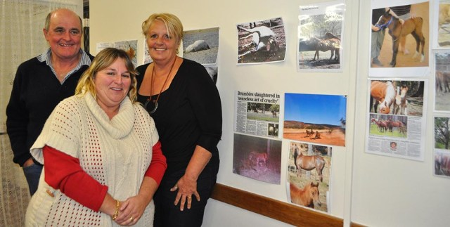 Brumby advocates Alan Lanyon, Beryl Ryan and Lynette Sutton at Wednesday night's meeting at the Tumut CWA hall, which attracted about 100 people.