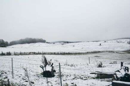 The landscape around Batlow turned white.