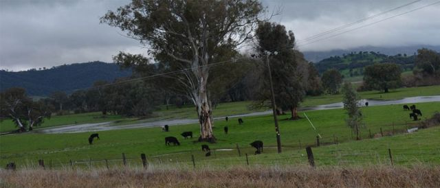 There's a flood watch in place for the Tumut valley.