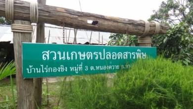 Ban Rai Kong Khing in Chiang Mai 01