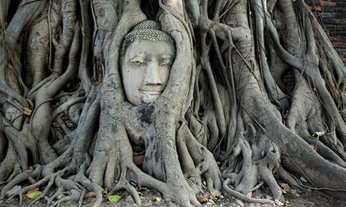 Thailand Ayutthaya 12-wat-maha-that