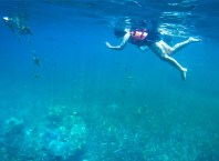Diving and Snorkelling in Thailand, Made Easy