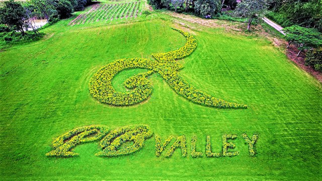 PB Flower Park returns on 1 November at PB Valley Khao Yai Winery