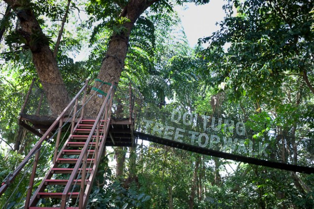 Tree Top Walk at Doi Tung