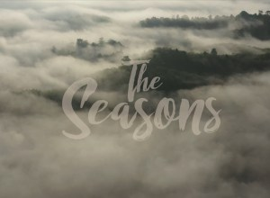 TAT Newsroom unveils new travel documentary series The Seasons