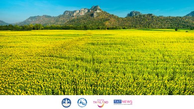 Thailand further relaxes COVID-19 measures from 21 June 2021