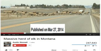 NEW STORY 4/14/2014 Animals Leaving Yellowstone? 4.7M & 4.9M (5.0M) Earthquake strikes the Western Yellowstone