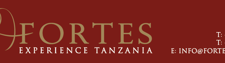 ARUSHA FORTES LIMITED