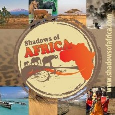 Shadows of Africa Ltd