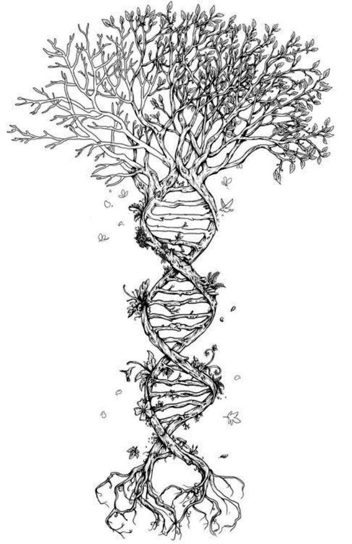 TattooMix Dövmecim ağaç tree dövmeleri (4)