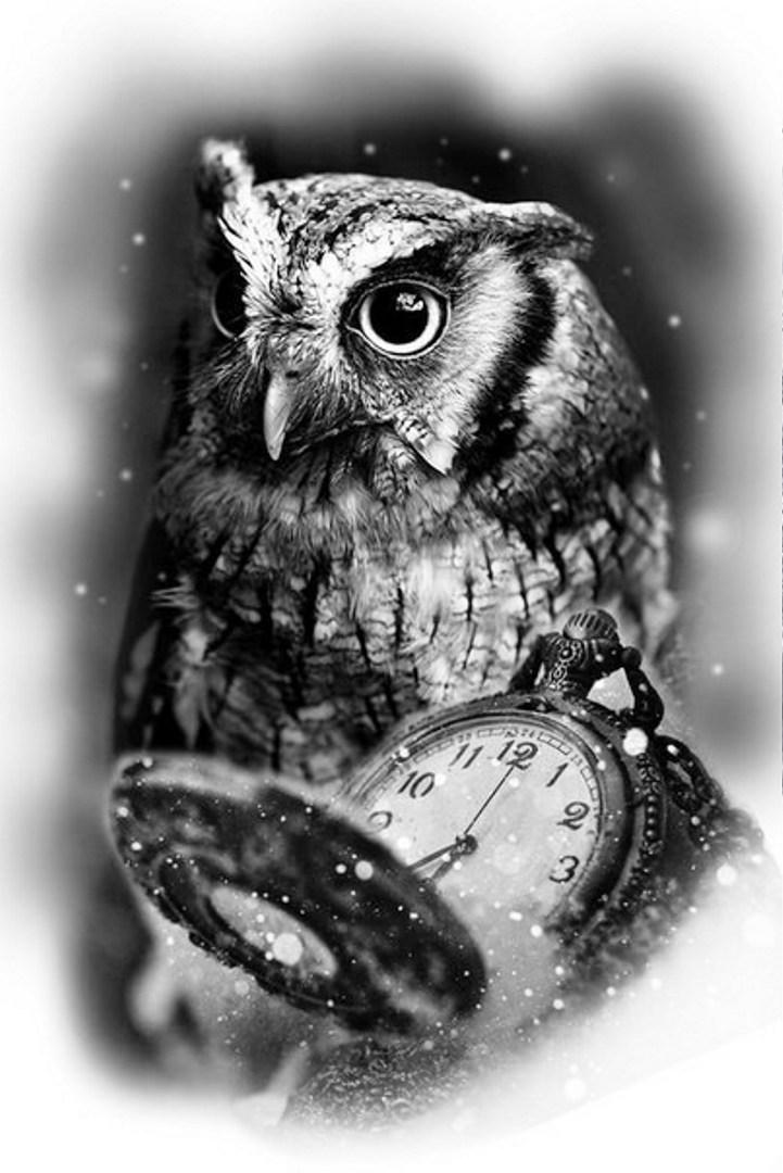 TattooMix Dövmecim baykuş owl dövmeleri (11)