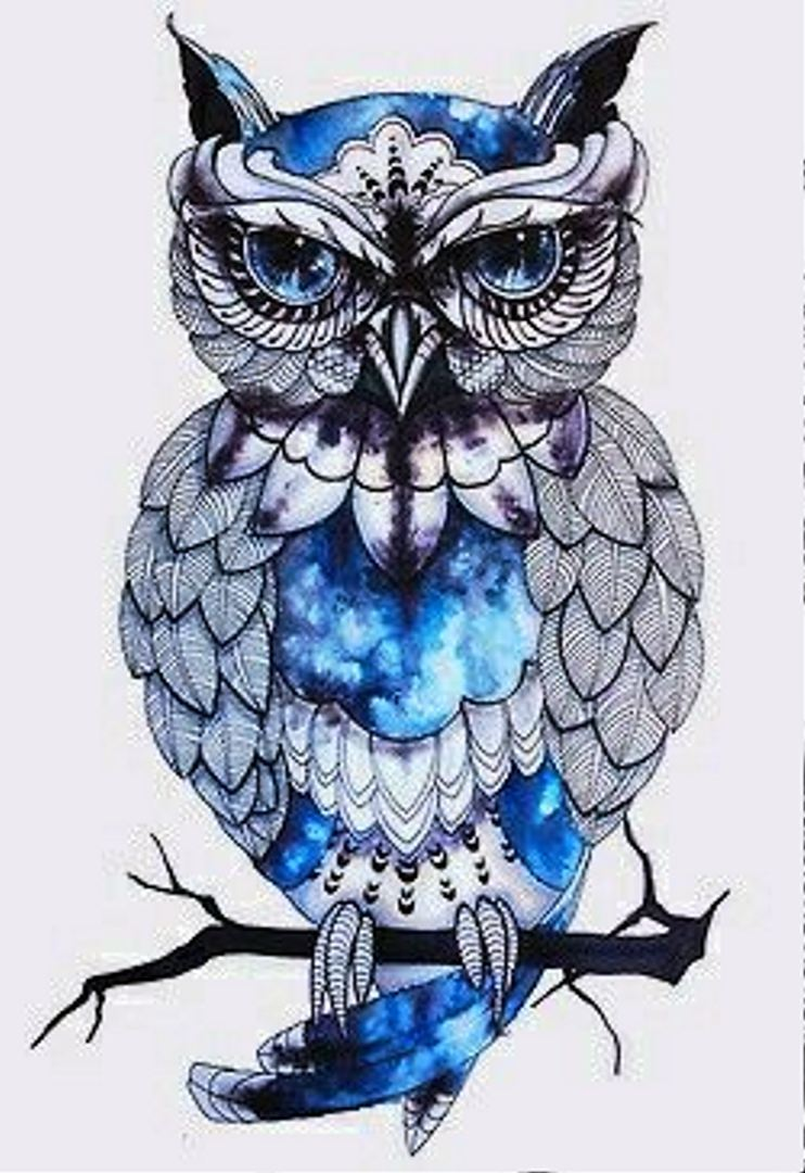 TattooMix Dövmecim baykuş owl dövmeleri (14)
