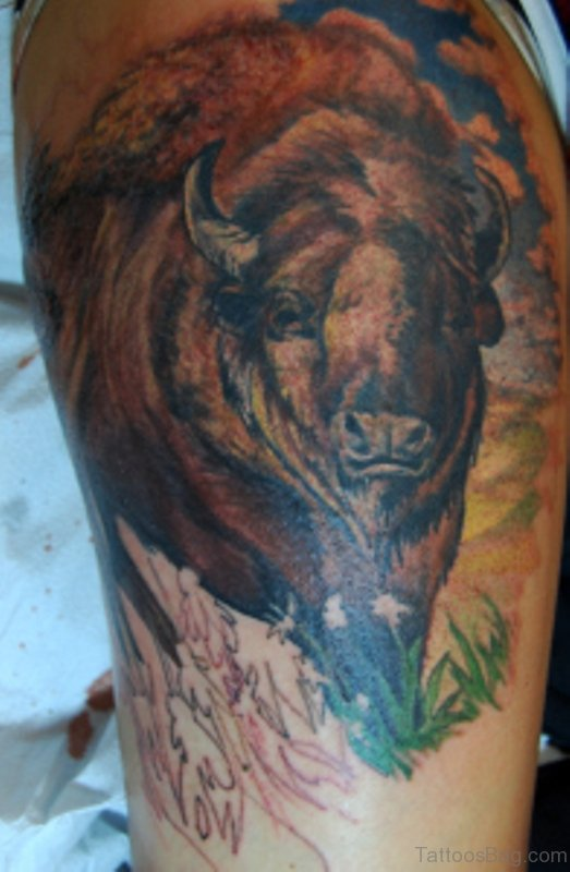 21 Buffalo Tattoos Design On Shoulder