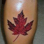Maple Leaf Tattoo Design Tattoo Designs Tattoo Pictures