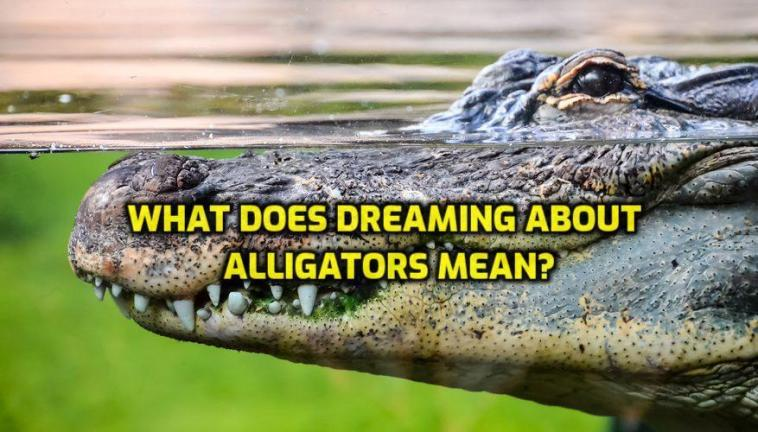 What Does Dreaming About Alligators Mean?