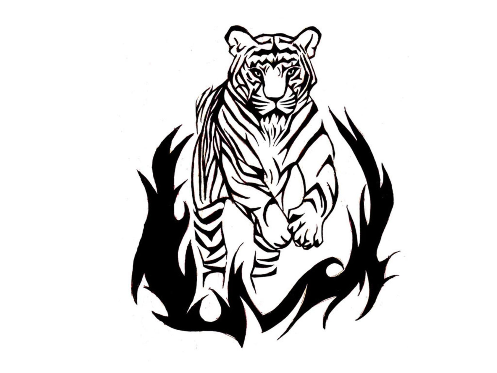 Tiger Tattoos Designs Ideas And Meaning