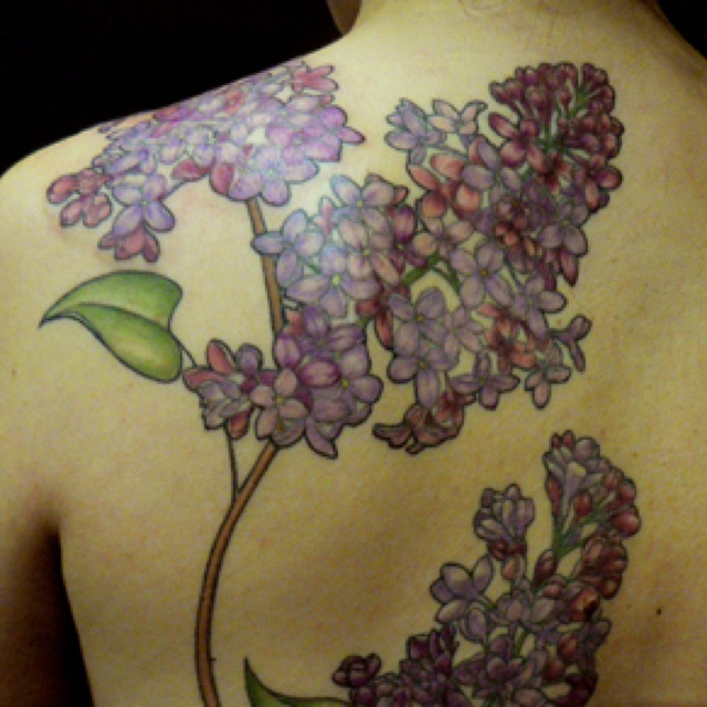 Lilac Tattoos Designs Ideas And Meaning Tattoos For You