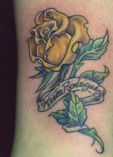Yellow Roses Meaning Love
