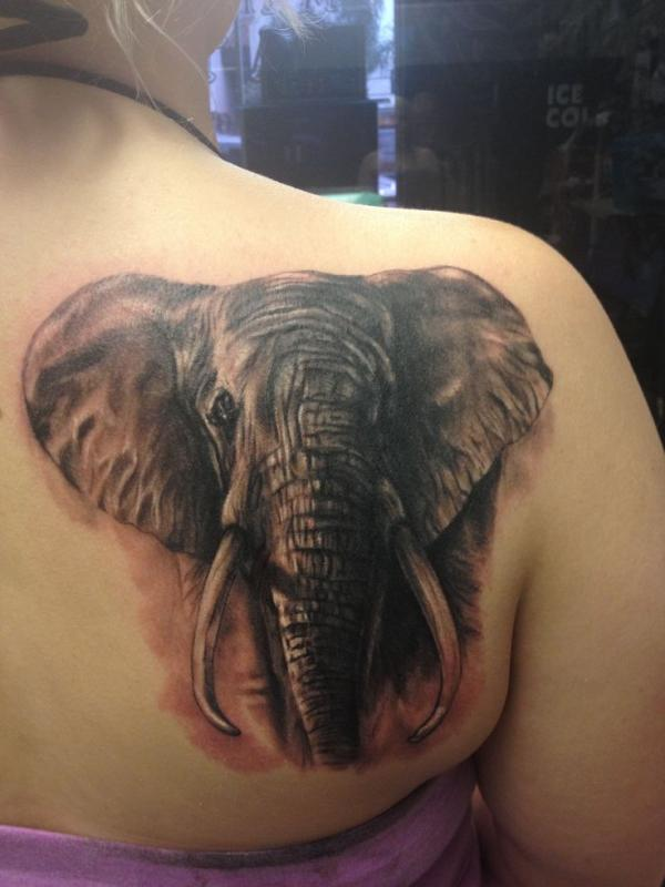 colorful elephant tattoo on muscles