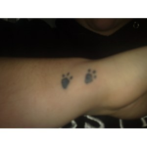 The Cat Paw Prints Tattoos Sample Cat Paw Prints Tattoos