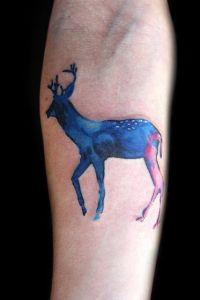 Ciervo Azul