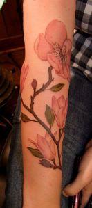 Rama Flor de Cerezo