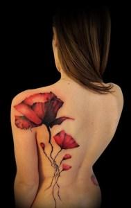 Flores de Amapola by Aurelio