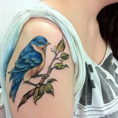 Ave azul sobre ramita
