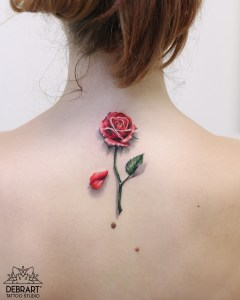 Flor Rosa deshojada
