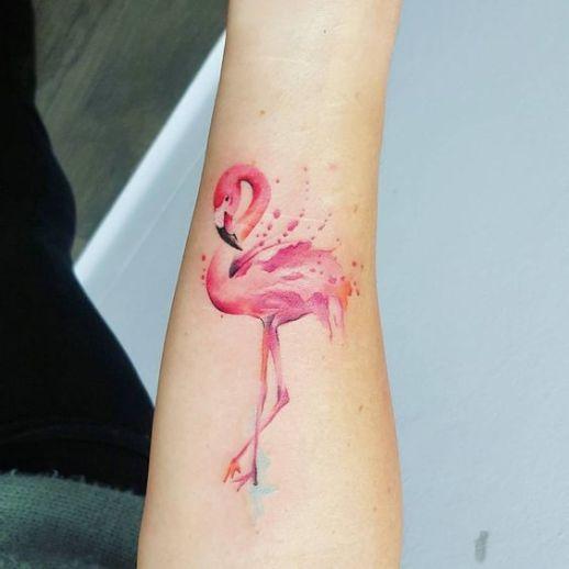 Flamenco rosado
