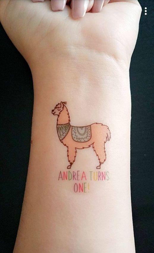 Frase: Andrea turns one! y alpaca