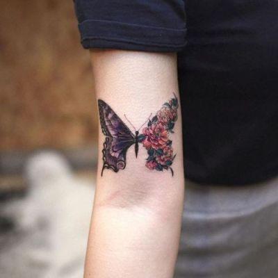 Metamorfosis de una mariposa