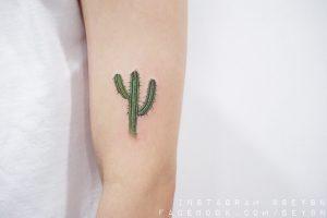 Cactus por Seyoon Kim / 김세윤 (@sey8n)