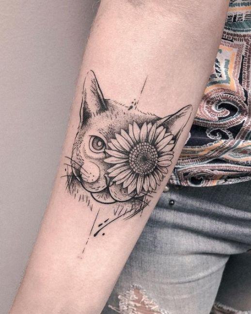 Gato con flor de girasol