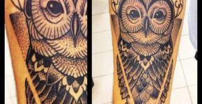 Owl tattoo on the arm