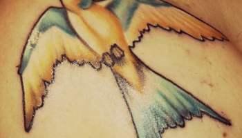 Tatuaje De Golondrinas En El Brazo Tatuajesxd