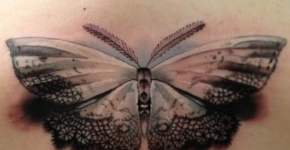 Realistic moth tattoo on the back