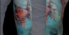 Tatuaje acuario en el brazo