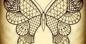Dibujo preparatorio mariposa