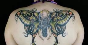 Tatuaje mariposa elefante