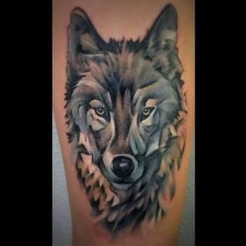 Tatuaje De Cabeza De Lobo Tatuajesxd