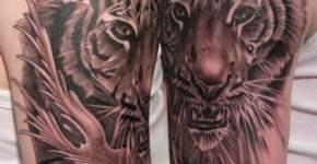 Tatuaje tigre en blanco y negro