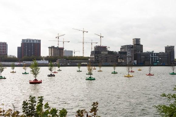 bobbing forest, Rotterdam