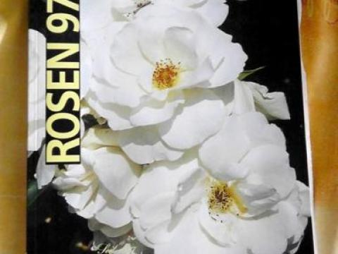 rosen kordes katalog rosen - katalog w.kordes / kannst du hier ganz einfach