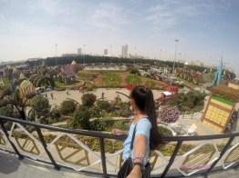 dubai miracle garden, butterfly garden