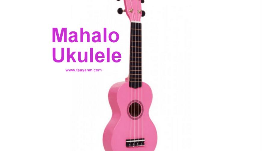 ukulele, mahalo ukulele, ukulele in dubai, musical instruments in dubau, dubai blogger, filipino blogger